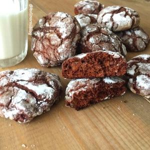 shokoladnoe-pechene-s-treshhinkami-1