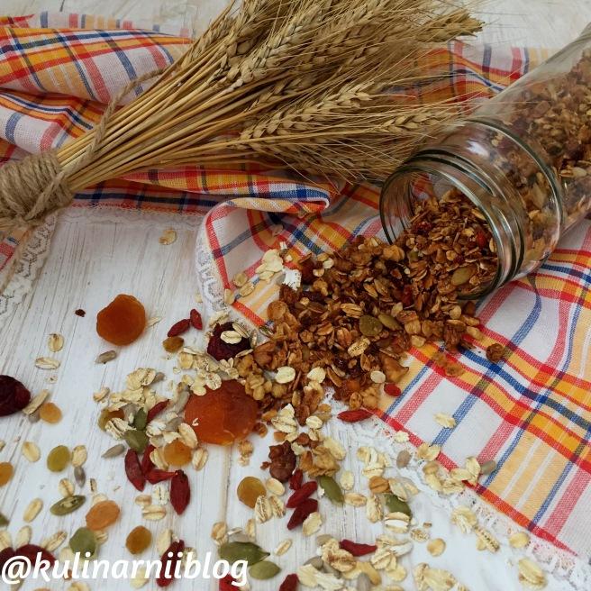 granola-v-domashnih-uslovijah-recept-3