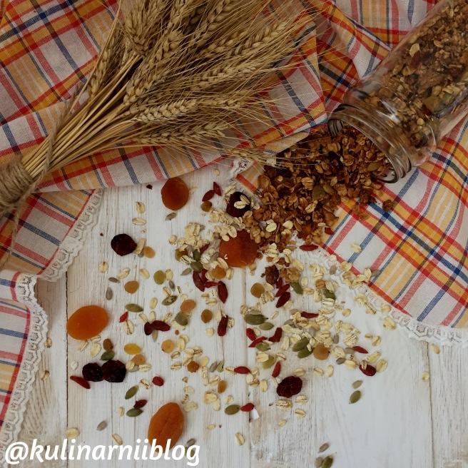 granola-v-domashnih-uslovijah-recept-2