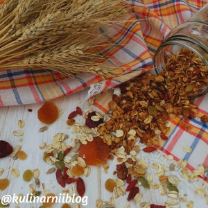 granola-v-domashnih-uslovijah-recept-1