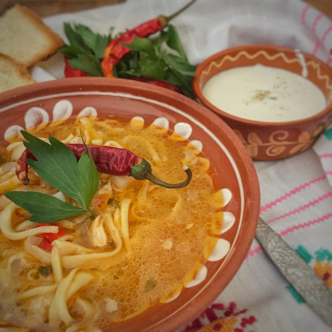 moldavskij-sup-zama